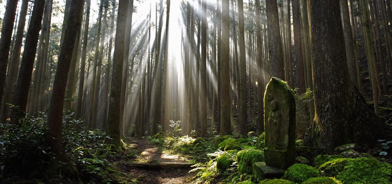 Kumano-Kodo-Nakahechi-route-copy
