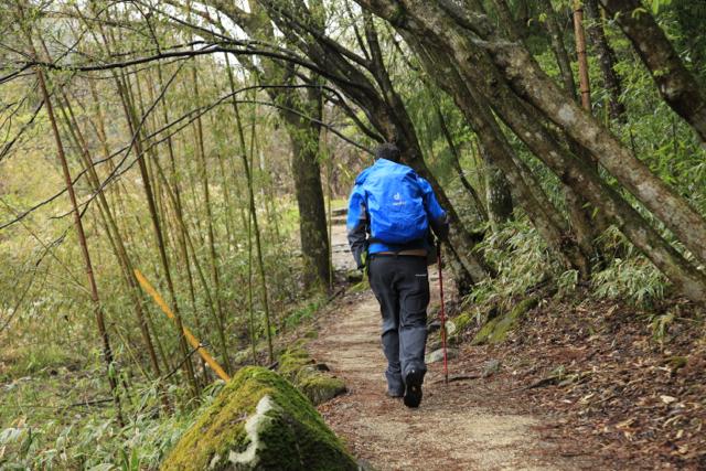 Australians on kumano kodo trail