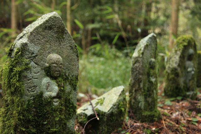 Kumano Kodo walking and trekking information