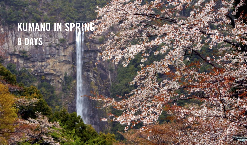 Kumano_Kodo_Spring